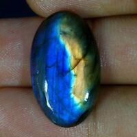Blue Fire Spectrolite Labradorite Cabochon 100% Natural Multi Flash Gemstone 011