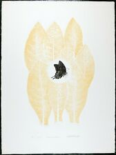 Vintage Engraving, Limited Edition, Mariposa De Ann Arbor, Butterfly by Caroizo