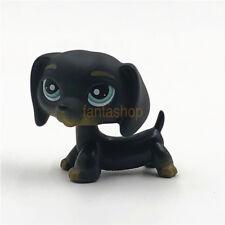 LPS Littlest Pet Shop Animal Loose Toy #325 Chien Teckel Black Dachshund Dog Kid