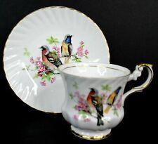 Vintage Rosina Fine Bone China Tea Cup and Saucer Birds England