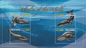 Sierra Leone 2010 MNH Whales of the World 4v M/S II Minke Sei Blue Whale
