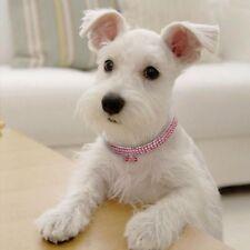 Dog Collar Shiny Rhinestone Crystal Diamond Pendant Bone Shape Puppy Necklace