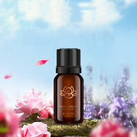 ROSE Pure Natural Essential Oils Aromatherapy Essential Oil 10ml Fragrance Aroma
