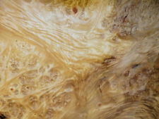 Myrtle Burl Raw Wood Veneer Sheets 8.75 x 21 inches 1//42nd              r6131-34