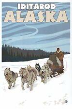 Iditarod Trail Sled Dog Race Alaska, Sledding Mushing AK Husky - Modern Postcard