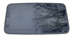 ✅TOYOTA 4RUNNER LEXUS GX470 03-04-05-06-07-08-09 SLIDING SUNROOF MOON GLASS