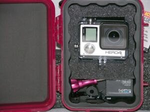 Pelican ™ 1020 Red case fits GoPro Hero6 6 5 4 3+ Black Edition Free nameplate