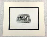 1843 Antico Stampa Fox Hounds Beagle Cani Lucy Delia Caccia Cane Old Incisione