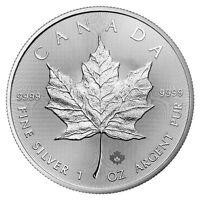 """1 oz 2019 SILVER CANADIAN MAPLE LEAF w """"19"""" Maple Leaf Privy - ENCAPSULATED"""