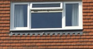 3 Windows 1800 X 1250mm Double Glazing, Fleet, Newbury Crowthorne, Thatcham