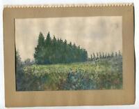 VINTAGE 1930's CALIFORNIA LEMON & EUCALYPTUS TREES N. INDIAN HILL BLVD  PAINTING