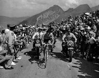 Eddy Merckx Tour de France Cycling Legend 10x8 Photo #1