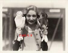EDWINA BOOTH Vintage Original Photo RARE JACOBIN PIGEONS Altadena Aviaries