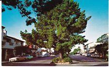 "Carmel CA ""Ocean Avenue, Vintage Cars""  Postcard California  *FREE US SHIPPING"