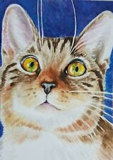 ACEO Original Art Card Tabby Cat Very Detailed Realistic Watercolor Free Ship