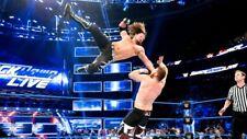 AJ STYLES WWE WCW WWF DIVAS Poster Print 24x36 WALL Photo A