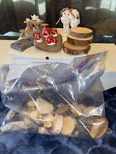 Lot Fairy Garden Miniature Supplies Gnome Fairy Elves Fantasy lot Beautiful 🤩