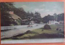 FGO Stuart Single Pre - 1914 Printed Collectable British Postcards