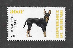 Dog Art Full Body Portrait Postage Stamp TOY MANCHESTER TERRIER Burundi 2011 MNH