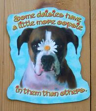 Leanin Tree Flex Magnet Boxer Dog Some Daisies Have More Oopsie Then Others,CUTE