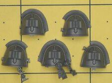 Warhammer 40K marines espaciales Gris Caballeros Marine hombreras (a)