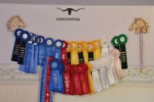 English / Dressage Horse Show Ribbon Wall Display Wooden Scroll Saw NEW