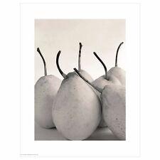 "IKEA Bild Art Poster""Pears""16""x20""Print Black&White Fruit Photo Pear Photograph"