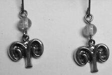 - 4/20) clear bead Zodiac earrings - Aries (3/21