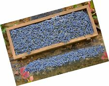 8 Ounces - Culinary French Lavender Flower Buds Dried - Ultra B. Free Shipping