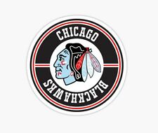 Chicago Blackhawks Champions Kane Hockey sports Sticker decal car laptop cute