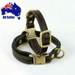 Genuine Leather Adjustable Pet Dog Collar Clip Buckle Real Tough CowHide Collar