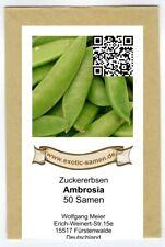 Schalerbse Frühe Harzerin 50+ Samen