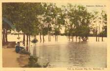 Bellevue Ohio Reservoir Fishing Black Man Antique Postcard K80611
