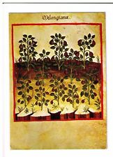 Postcard: Theatrum Sanitas, Ububchasym de Baldach, Casanatense Library of Rome