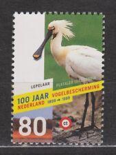 NVPH Nederland Netherlands 1811 MNH Lepelaar, spoonbill, spatule 1998
