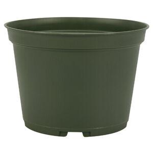 6 inch Flower Pot (Qty. 40), Nursery Container, Greenhouse Azalea Pots, Green