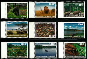 Zentralafrika Elefant, Gorilla, Löwe; Central African Republic Elephant, Gorilla