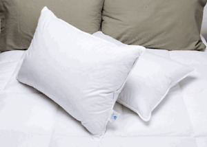 Manchester Mills Down Dream Pillow - Customer Return Clearance