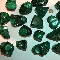 Polished Malachite Specimen - Congo  ~ (1) Specimen - Stunning Color - Free Form