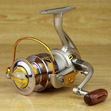 10BB Ball Bearing Saltwater Freshwater Fishing Spinning Reel 5.5:1 EF2000