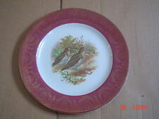 British Grindley Pottery Dinner Plates