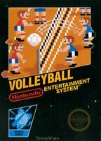Volleyball Nintendo Nes Cleaned & Tested Cart Only Authentic