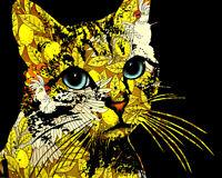 Dean Russo Art Mini Print on Paper Signed Kitten Animal Pet Portrait 5x7 Cat