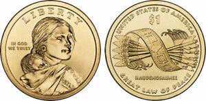 2010-P Native American Dollar Coin Satin Finish