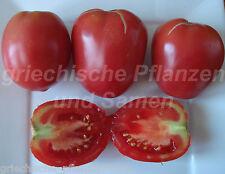 yubilenyniy tarasenka Tomate Bottiglie Pomodoro UCRAINA 10 semi freschi BALCONE
