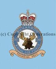 ROYAL AIR FORCE 242 SQUADRON  COASTER
