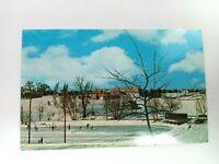 Vintage Postcard Memorial Park Frankenmuth Michigan Ice Skating Pond