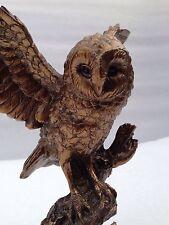 Owl Figure Ornament Bronzed Barn Owl Wildlife Reflections by Leonardo Gift Boxed