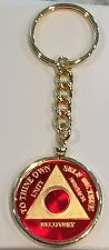 Any Year Or Month Red 24k Gold Plated AA Medallion Keychain Removable Chip