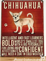 20cm metal vintage style Chihuahua lover gift breed character hang sign plaque